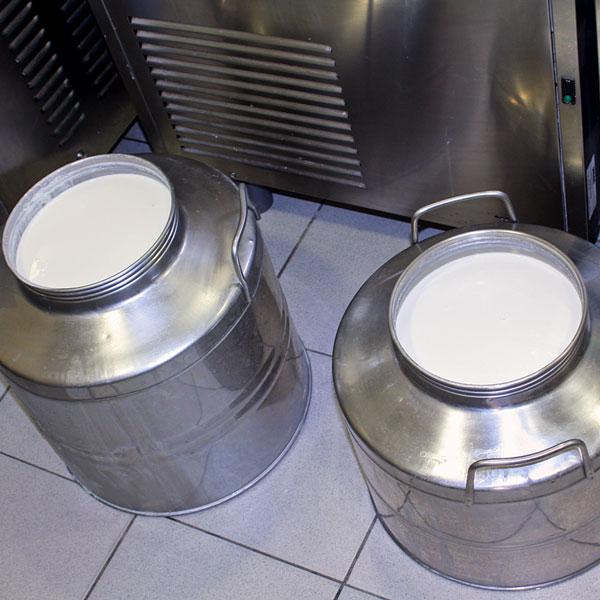 Fresh milk!!!